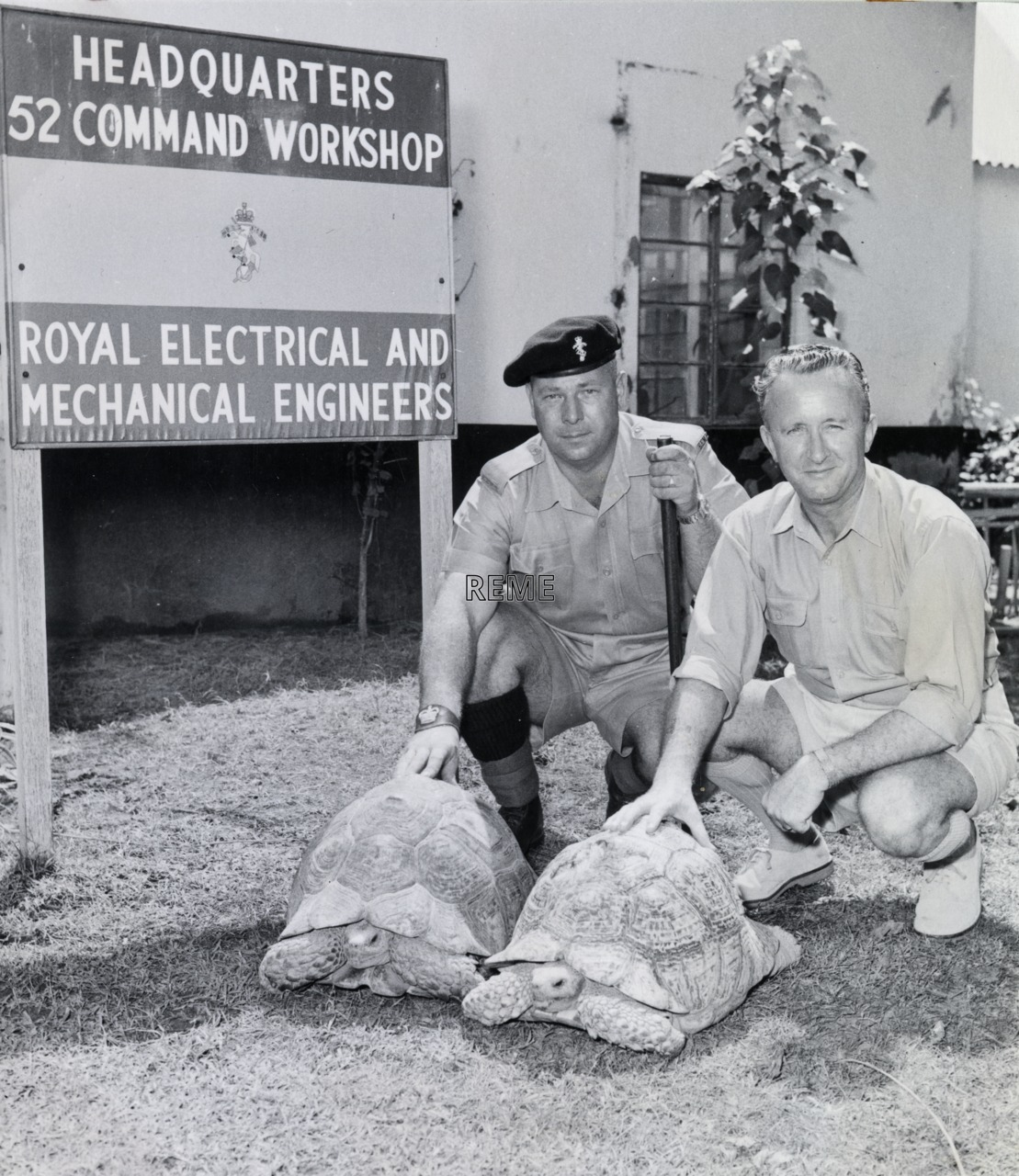 52 Command Workshop REME, Aden: individuals with tortoises in front of headquarters.